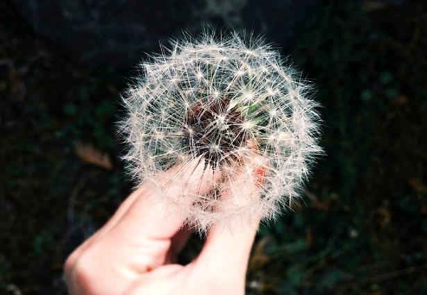 ÚLTIMAS PLAZAS!! Mindfulness: reducción y manejo del estrés (miércoles del 19 de octubre al 30 de noviembre)
